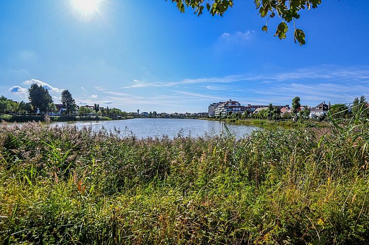 Zeer ruime villa met veel mogelijkheden aan Zegemeer Knokke